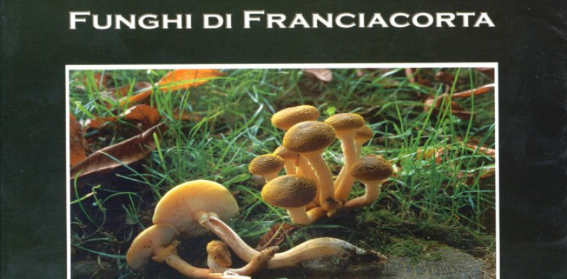 FUNGHI di FRANCIACORTA